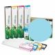 EEC Cartucho de tinta eco-solvente EcoNova MAPLE para plóters MIMAKI con tinta SS21 - Cartucho 440ml - cian-claro