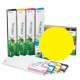 EED2 Cartucho de tinta eco-solvente EcoNova AURORA para plóters Roland (DX7), EcoSolMax2, 440ml - amarillo